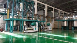 Commissioning of Root disperse dye sand mill production line in Zhejiang Province