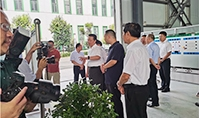 Leaders Inspect Anhui Root Factory